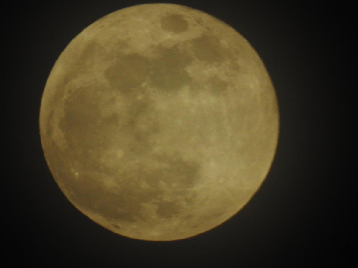Kliknij obrazek, aby uzyskać większą wersję  Nazwa:K Super Blue Blood Moon 31.1 (13).JPG Wyświetleń:20 Rozmiar:4,48 MB ID:4714