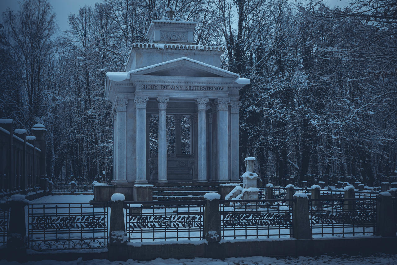 Kliknij obrazek, aby uzyskać większą wersję  Nazwa:Cmentarz żydowski 10.01.2021r.  025-Edit.jpg Wyświetleń:8 Rozmiar:2,72 MB ID:47243