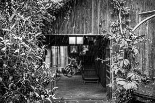 Kliknij obrazek, aby uzyskać większą wersję  Nazwa:_WPK3602 Blurry Self-Portrait in the Rain 320.jpg Wyświetleń:68 Rozmiar:68,5 KB ID:40980