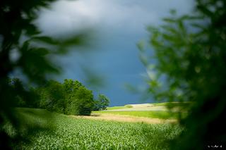 Kliknij obrazek, aby uzyskać większą wersję  Nazwa:_WPK3592 Landscape number ftyv 320.jpg Wyświetleń:71 Rozmiar:54,1 KB ID:40957